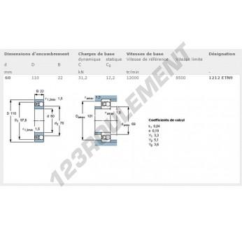 1212-ETN9-SKF - 60x110x22 mm