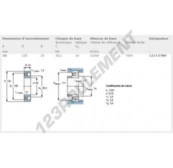 1213-ETN9-SKF - 65x120x23 mm