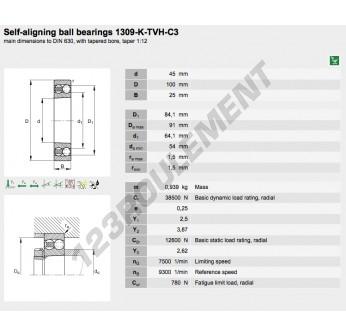 1309-K-TVH-C3-FAG - 45x100x25 mm