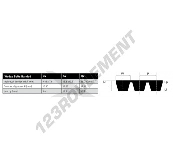 3V355-BAND-OPTIBELT
