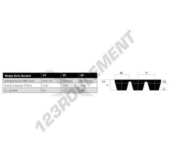 3V450-BAND-OPTIBELT