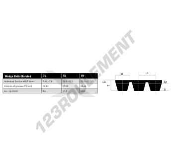 3V950-BAND-OPTIBELT