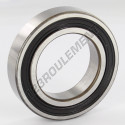 6009-2RS-SKF