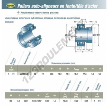 CEX206-20-SNR - 31.75x62x19 mm