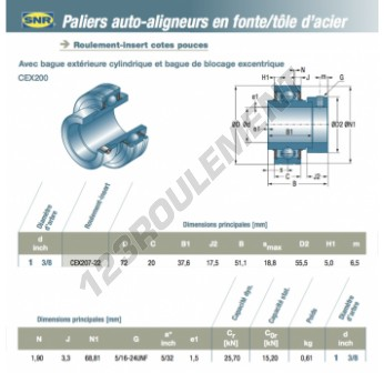 CEX207-22-SNR - 34.93x72x20 mm