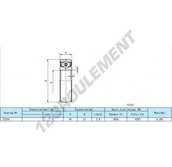 CS203 - 17x40x12 mm