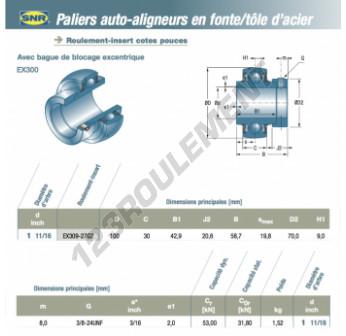 EX309-27-G2-SNR - 42.86x100x30 mm