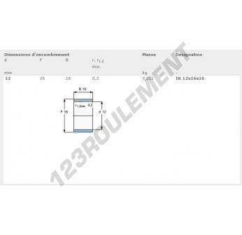 IR12-16-16-SKF - 12x16x16 mm