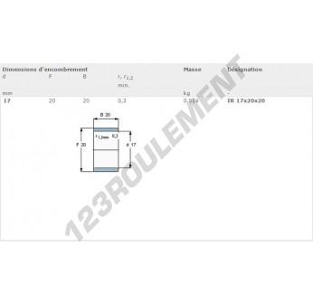 IR17-20-20-SKF - 17x20x20 mm