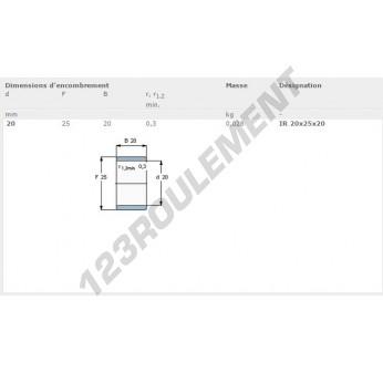 IR20-25-20-SKF - 20x25x20 mm