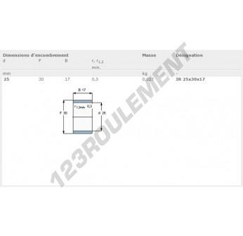 IR25-30-17-SKF - 25x30x17 mm