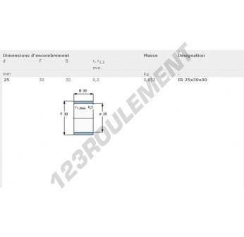 IR25-30-30-SKF - 25x30x30 mm