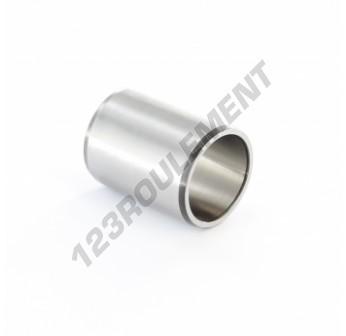 IR25-30-38.5-SKF - 25x30x38.5 mm