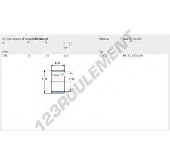 IR30-35-20-SKF - 30x35x20 mm