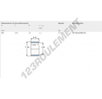 IR85-100-35-SKF - 85x100x35 mm