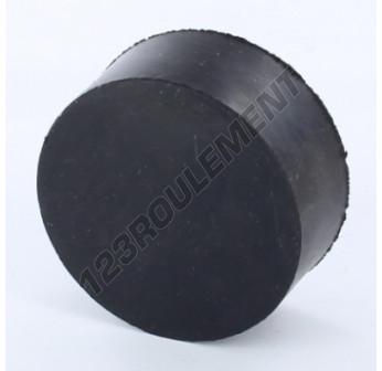 PF6025-10 - M10x60x25 mm